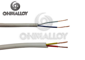 China Type S/R/B Thermocouple Cable , Extension Cable With Fiberglass Silicon Rubber PTFE supplier